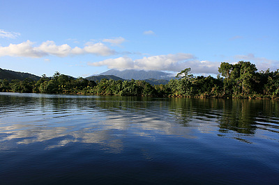 Thornton's Peak from Daintree River