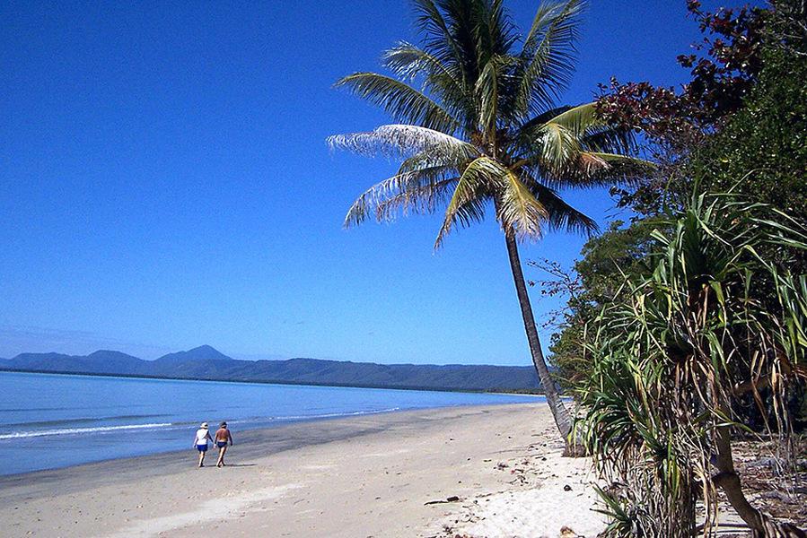 [Image: Wonga-Beach---Daphne-Titus-Rees.jpg]