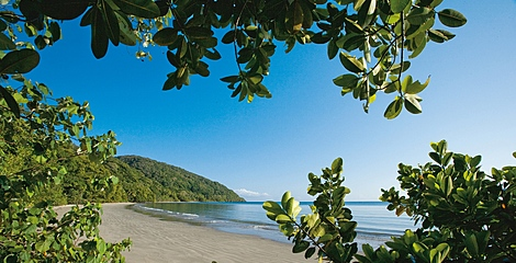 Beach walk in the Daintree Coast