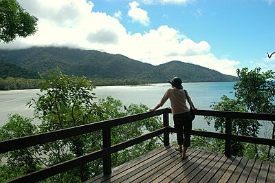Cape Tribulation Lookout