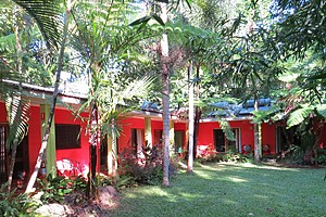 Daintree Rainforest Retreat accommodation and gardens