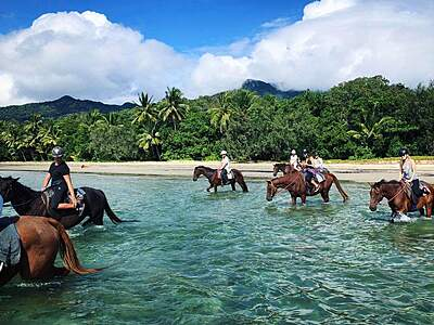 Cape Tribulation Horse Rides