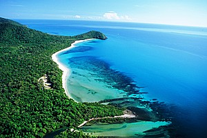 Absolute beachfront camping - Cape Tribulation Camping