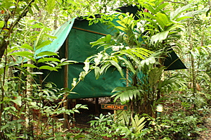 Wooden and canvas build safari tent - Crocodylus - Cow Bay