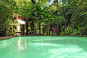 Swimming Pool - Red Mill House in Daintree