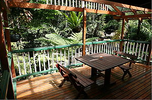View from balcony - Daintree Secrets