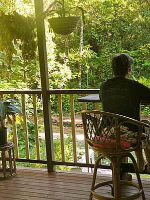 Decking overlooking the forest at Bellarose Guesthouse - Cow Bay