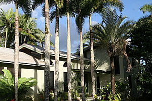 Daintree Village Bed and Breakfast