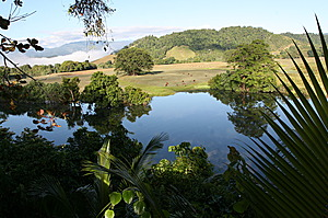 Daintree River outlook Daintree Village Bed and Breakfast