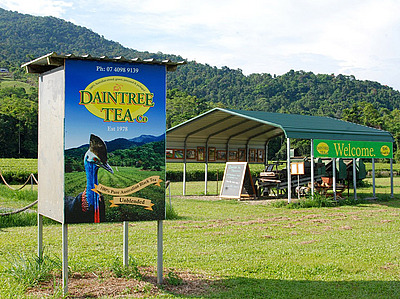 Daintree Tea Company