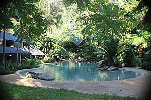 Lower Pool - Ferntree Rainforest Lodge
