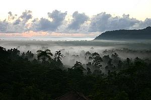 Views to Alexandra Bay from Cockatoo Hill Retreat