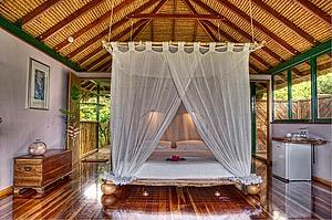 Cockatoo Hill tree house bedroom