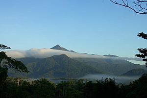 Thornton's Peak raising through the clouds - Thornton's Peak raising through the clouds