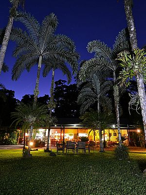 Restaurant by night - Lync Haven Rainforest Retreat