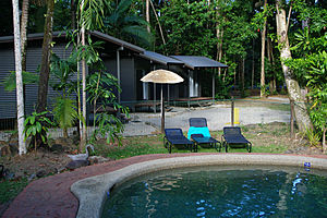 Jungle Lodge swimming pool