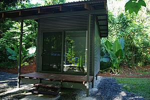 Jungle Lodge eco hut