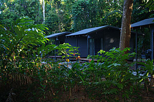 Jungle Lodge eco huts